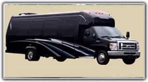 Party Bus Limo / 20 pass